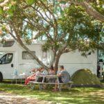 Kiwi-Corrall-Gallery-OPT10